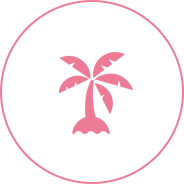 マルチアイランド