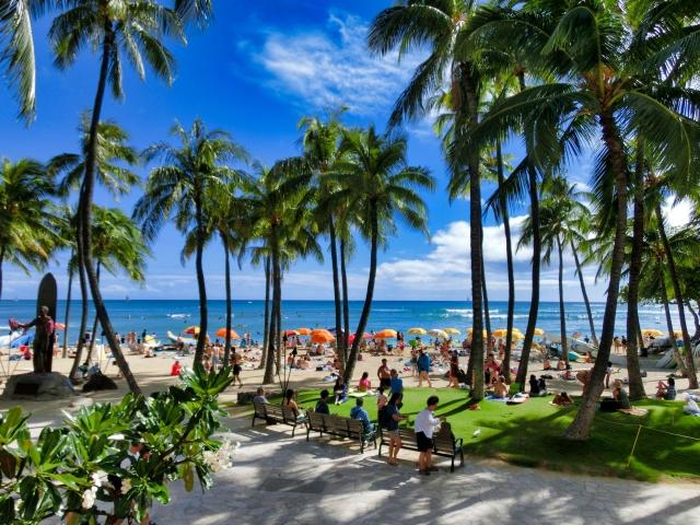 ハワイでレンタカーはどこで借りる?空港近くかワイキキエリアの二択!